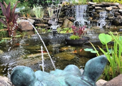 Hoffman's Water X Scapes Graden Center - Uniontown, OH