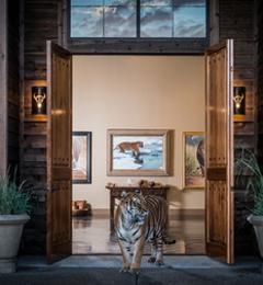 Banovich Art Inc - Livingston, MT