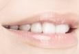 Alan J Chernick, DDS, Fellow Academy of General Dentistry, Diplomate-American Board of Dental Sleep Medicine - New City, NY