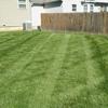Good Neighbor Lawn Care