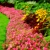 GrowPro Landscaping & Maintenance