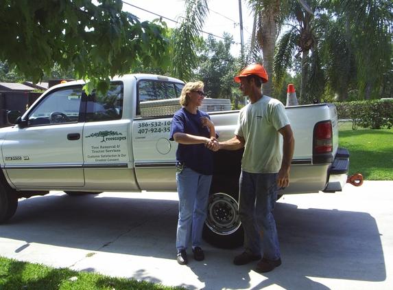 Treescape Tree Removal Service - Deland, FL