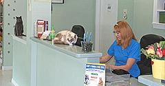 PetSound Animal Hospital - Cary, NC