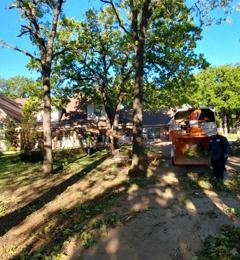 Sal's Landscape & Tree Service - Irving, TX