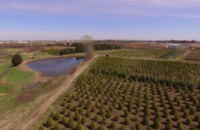 Owasso Christmas Tree & Berry Farm Owasso, OK 74055 - YP.com