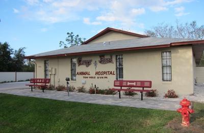 Curry Ford Animal Hospital - Orlando, FL