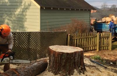 Chop Chop Tree - Sarasota, FL