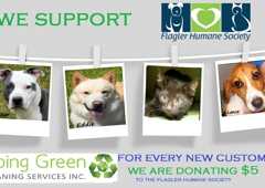 Going Green Cleaning Services Inc. - Palm Coast, FL