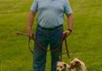 Powers K-9 Dog Training