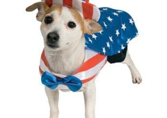 ALWAYS PERFECTION PARTY SUPPLIES & HALLOWEEN COSTUMES - Branchburg, NJ