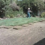 THE VALLEY SOD FARM INC