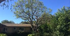 Artistic Arbor Gardens Inc - Lakeside, CA