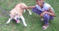Brockton Blue Dog Shelter - Brockton, MA