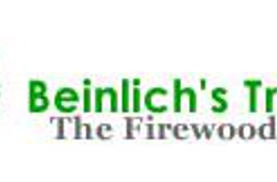 Beinlich's Tree Care logo