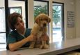 Village Oak Veterinary Hospital - Modesto, CA