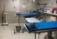 Andover Animal Hospital - Andover, MA