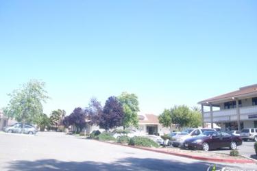 South Bay School Of Music Arts