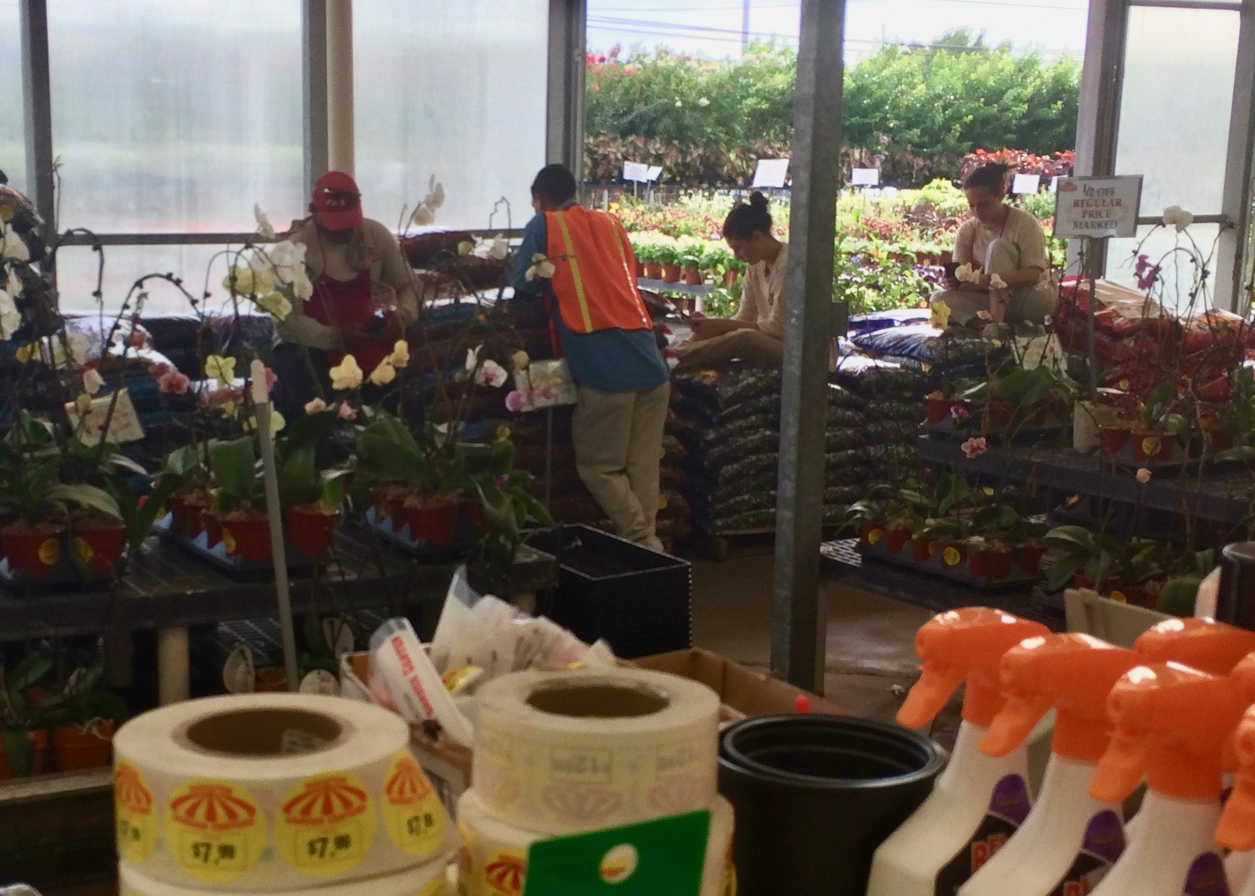 houston garden centers 2811 airline dr houston tx 77009 ypcom - Houston Garden