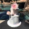 Custom Cake Couture