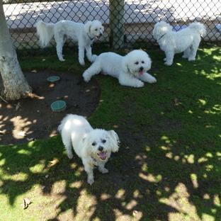 Pacific Coast Pet Care - Carlsbad, CA