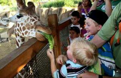 Willamette After School - West Linn, OR. Fieldtrips to the Zoo