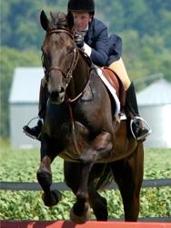 Turn Crest Equestrian Ctr