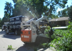 Metro Tree Crane Service Minneapolis