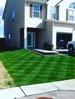 Lawn Maintenance Dacula Ga