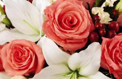 Bristol Florist - Bristol, CT