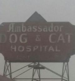 Ambassador Dog & Cat Hospital - Los Angeles, CA. Convenient locatiom