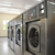 Wells Laundry Circle M
