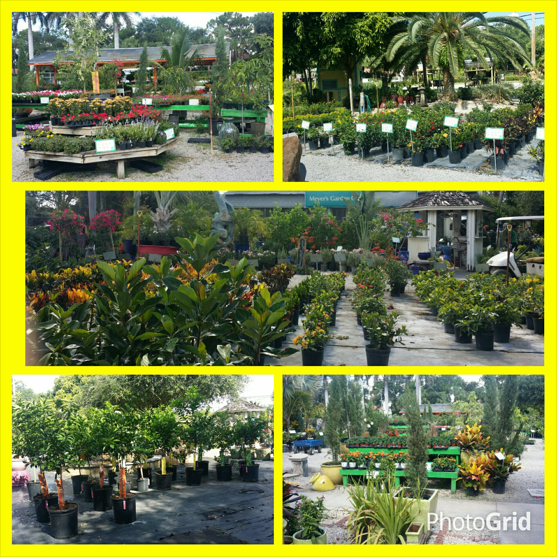Meyer\'s Turf & Landscape Nursery 7920 N Military Trl, West Palm ...