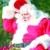 "Here Come's ""Santa Claus"""