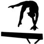Maximum Velocity Gymnastics, Inc.