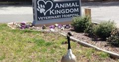Animal  Kingdom Veterinary Hospital - Cary, NC