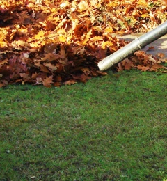 Grandpa Landscaping Management - Birmingham, AL. Leaf removal services