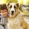 New Georgia Animal Hospital