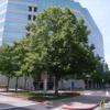 Center For Health Design