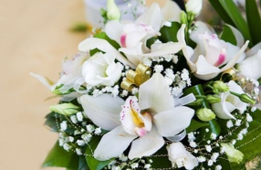 Top-Rated Florists in Greater Sacramento