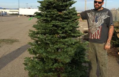 Brent's Christmas Trees - Albany, CA