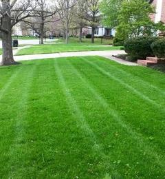 Preferred Lawn and Landscape - Phenix City, AL