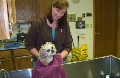 Dog Grooming Appleton Wi