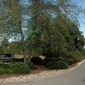 Piedmont Carolina Landscaping - Colfax, NC