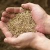 Caudill Seed Company Inc