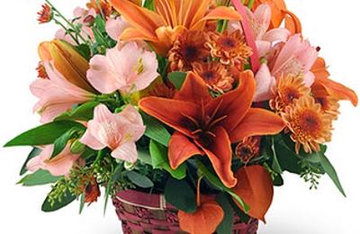 Petals Florist - Beaumont, TX