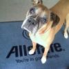 Christy Cox: Allstate Insurance