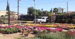 Vineland Nursery North Hollywood Ca