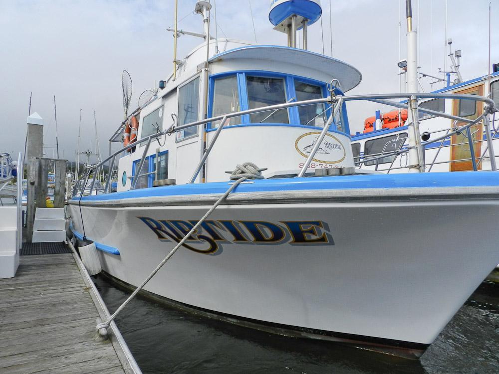 Riptide charters 27 johnson pier half moon bay ca 94019 for Half moon bay pier fishing
