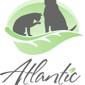 Atlantic Veterinary Hospital - Seattle, WA