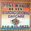 Dogs World Of Fun